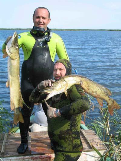 Подводная охота в дельте волги на щуку
